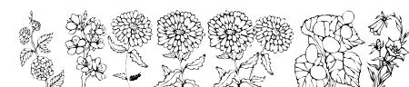 DT Flowers 1 Sample
