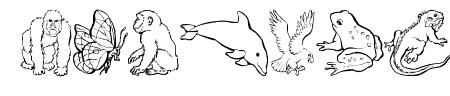 Nina's Animals Sample