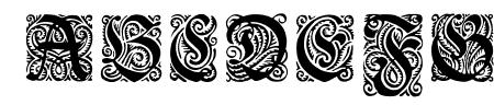 Ehmcke-Fraktur Initialen Sample