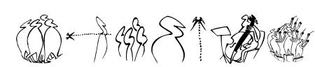 OhLauri Sample