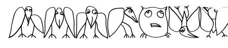 LateBirds Sample