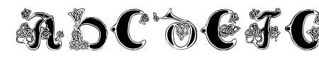 Celtic Knot Sample