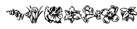 KR Beautiful Flowers 2 Sample