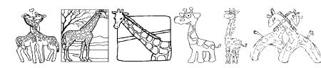 AEZ giraffes Sample