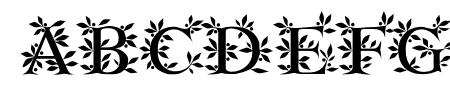 EFN Zielony Font Sample