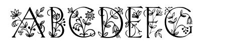 Koch Altschrift Initialen Sample