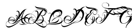 Lina Script Alt Demo Sample