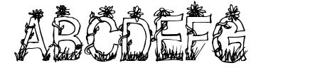 CF Plants and Flowers Regular Sample