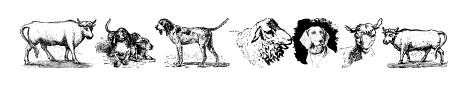 Animals Old Cuts Sample