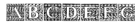 JMHMorenetaINI-Regular Sample