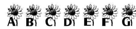 AEZ sunflower letters Sample