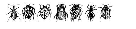 Buggys Regular Sample