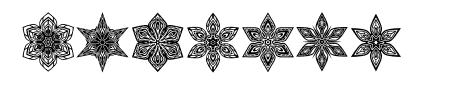 Snowflake Regular Sample