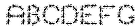 ANTY Bold Sample