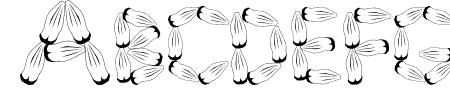 Pinh�o Sample