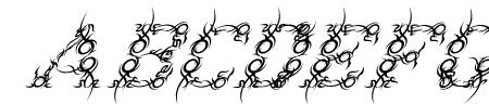 Tribou-Italic Sample