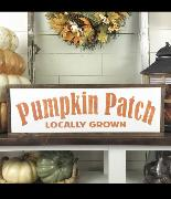 looking for font used on pumpkin patch